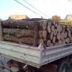lemne furt dej
