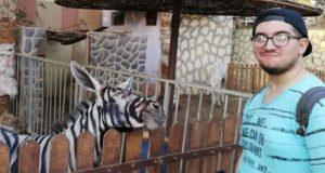 magar pictat ca o zebra