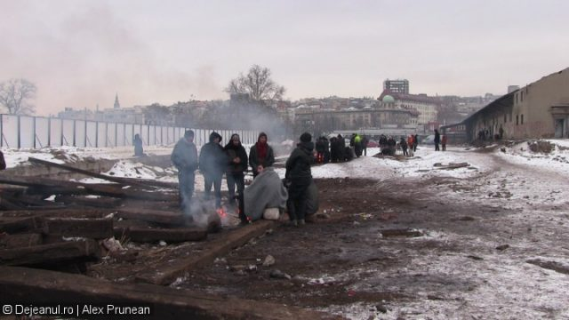 refugiati belgrad (11)