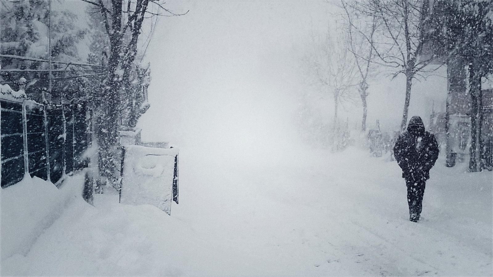 zapada ninsori