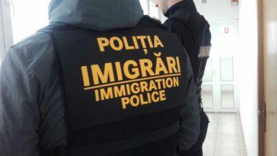 imigrari