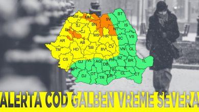 cod-galben-cj